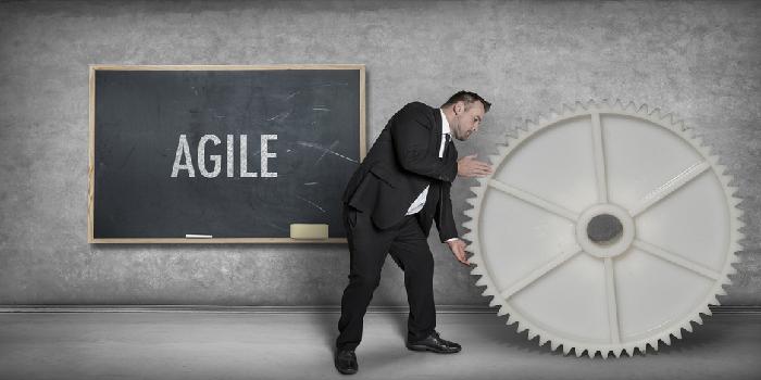 Agiles ERP-Projektmanagement - Vor und Nachteile